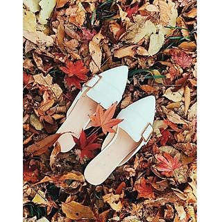 Giày Nữ Sục Móc Vuông  Mũi  Nhọn Đế 3p