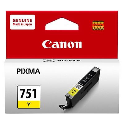 Mực In Canon CLI-751 Cho Máy In Canon iP 7270, MG 6370, iX 6770, iP 8770, iX 6870 - Hàng Chính Hãng