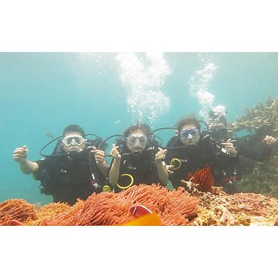 NHA TRANG: Tour 4 Đảo Và Lặn Biển Khám Phá Thế Giới Đại Dương Ngắm San Hô Trọn Gói Xe Đưa Đón Khách Sạn + Canoe/Tàu Ra Đảo + Ăn Trưa + Vé Tham Quan