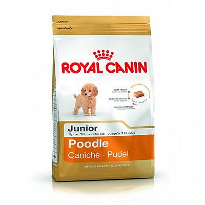 Thức ăn cho chó dưới 10 tháng Royal Canin Poodle Junior 1,5kg