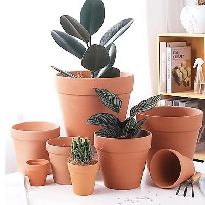Chậu trồng cây mini, sen đá, xương rồng - Chậu đất nung - Nhiều kích thước - Mầu nâu đỏ