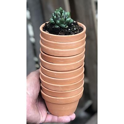 Bộ 10 chậu đất nung trồng xương rồng sen đá kích thước fi 9 x 5,5 cm
