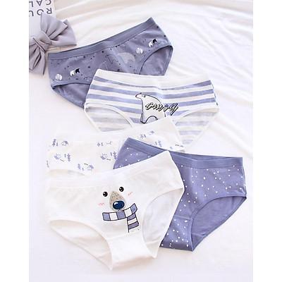 Combo 5 quần lót cotton nữ  in họa tiết QL08