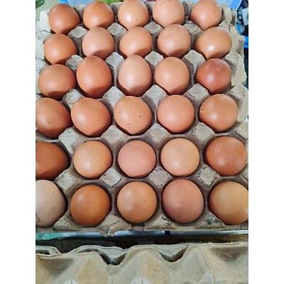 [CHỈ GIAO HCM]Trứng gà sạch (10 trứng)