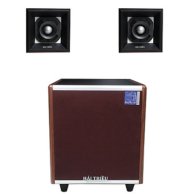 Loa sub điện siêu trầm & Đôi loa chép rời cho dàn âm thanh karaoke gia đình Hải Triều (hàng chính hãng)