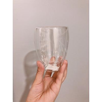 Ly cốc thủy tinh 2 lớp cách nhiệt trơn trong suốt (Chọn kích cỡ)