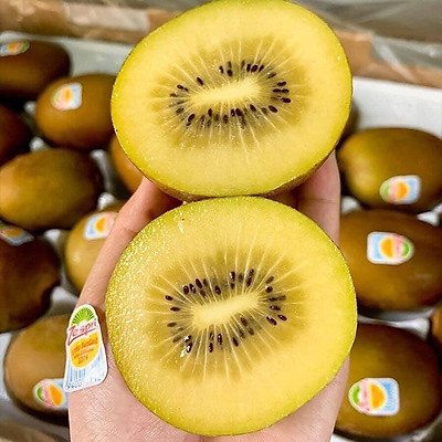 Kiwi vàng New Zealand sz22