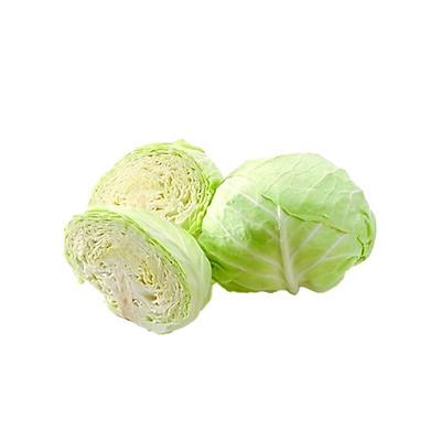 Bắp Cải Trắng, Sú Trắng - Rau củ quả tươi sạch, rau xanh Đà Lạt - 1kg