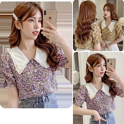 Áo kiểu nữ, áo nữ hoa nhí cổ bèo đủ size S M L Newbrand A-21