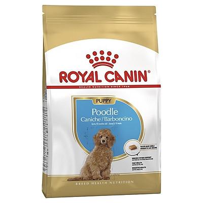 Thức ăn chó con Poodle dưới 10 tháng, Royal Canin Poodle Junior 500g
