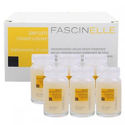 Serum phục hồi mái tóc khô xơ và hư tổn FASCINELLE RECONSTRUCTION SERUM SHOCK TREATMENT (6 chai x10ml) - DMC012