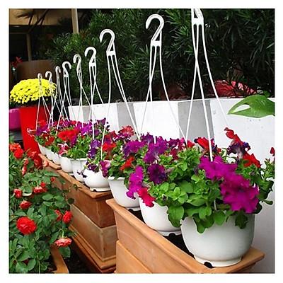 10 chậu nhựa treo trồng cây trang trí nhà cửa chuyên dụng, nhựa ABS trồng hoa ,trồng rau (tặng 10 dây treo)