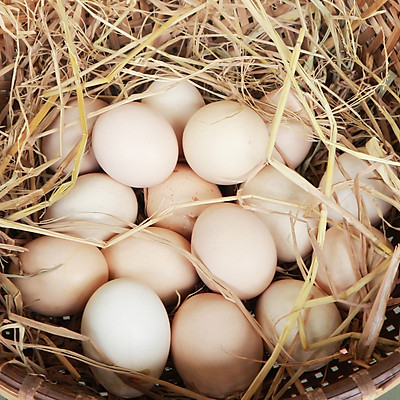 [Chỉ Giao HCM] - Trứng Gà Ta Thả Vườn - 10 Trứng - Laman Food