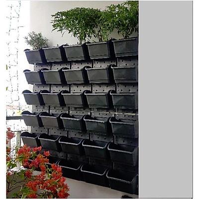 1m2 Vườn tường HOLO- Khung chậu trồng cây trồng rau trồng hoa trên tường - Màu Đen (10 khung + 30 chậu)