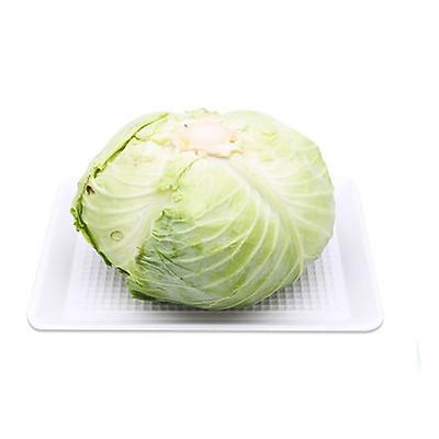 [Chỉ Giao HN] - Bắp cải trắng - 1 Chiếc