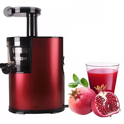 Máy ép trái cây chậm kèm bộ phụ kiện vệ sinh - máy ép hoa quả tốc độ chậm