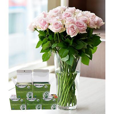 Dinh Dưỡng Giữ Hoa Hồng cắm bình Lâu Tàn - Food For Cut Flowers (Set 50 gói loại 5gr) giúp hoa luôn tươi mớ, cứng cáp gấp 2 lần và trong 14 ngày không thối nước hay cắt tỉa gốc hoa, nhập khẩu Israel