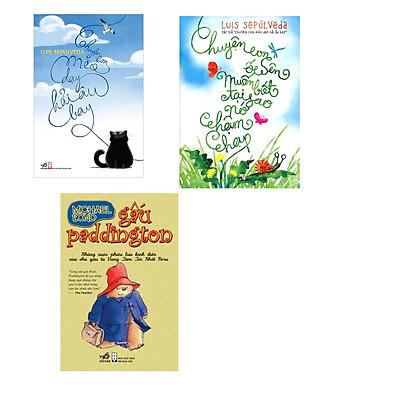 Combo 3 cuốn sách: Chuyện con mèo dạy con hải âu bay + Chuyện con ốc sên muốn biết tại sao nó chậm chạp  + Gấu Paddington