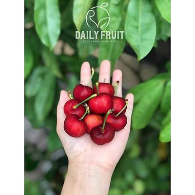 [Chỉ giao HCM] Cherry Đỏ Mỹ size trung 9.5 - Hộp 500G