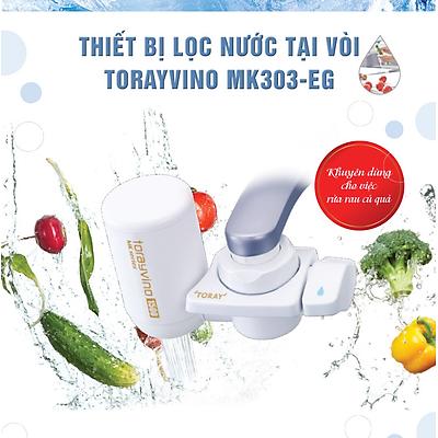 Thiết Bị Lọc Nước Tại Vòi Toray Torayvino MK303-EG - Hàng chính hãng