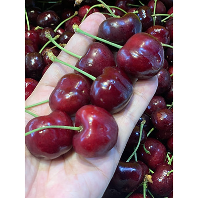 [Chỉ Giao HCM] Cherry Canada - 1kg