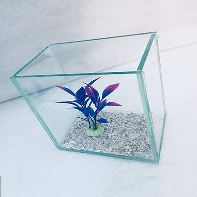 Bể cá mini để bàn 15x10x15cm - Tặng phụ kiện
