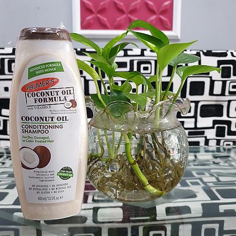 Dầu gội và dầu xã dưỡng ẩm, phục hồi và kích thích mọc tóc từ dừa Palmer s Coconut Oil Formula 6