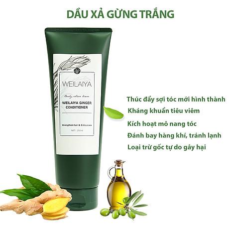Dầu xả dưỡng tóc Weilaiya chiết xuất tinh chất gừng tươi ngăn ngừa rụng tóc (200ml) - Sản phẩm chính hãng 5