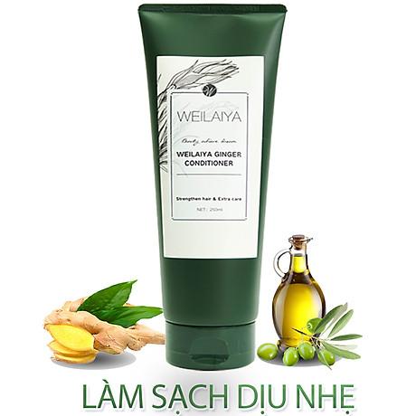Dầu xả dưỡng tóc Weilaiya chiết xuất tinh chất gừng tươi ngăn ngừa rụng tóc (200ml) - Sản phẩm chính hãng 6