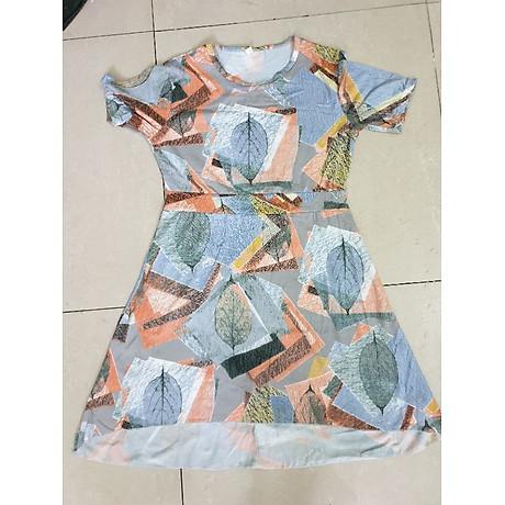 Đầm, váy maxi dáng dài NH40 - NH40 6
