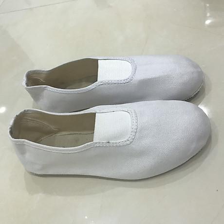 Giày múa không dây 2