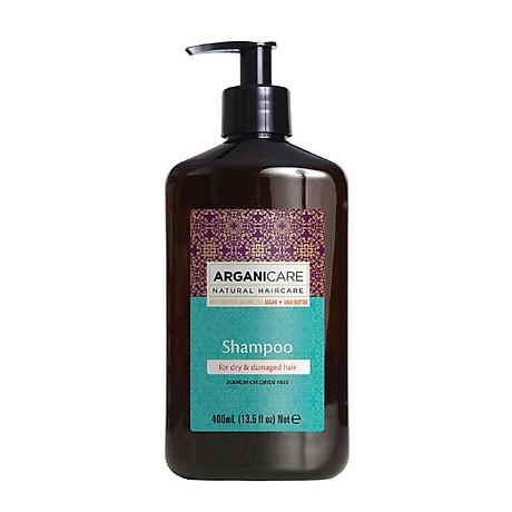 Dầu gội phục hồi Arganicare Shampoo Sodium Chloride Free 1
