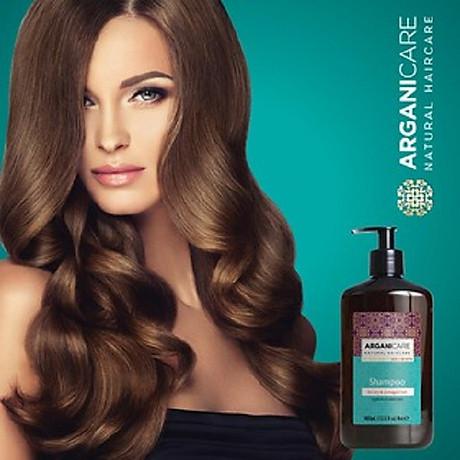 Dầu gội phục hồi Arganicare Shampoo Sodium Chloride Free 2