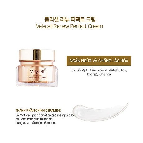 Kem dưỡng da Velycell Renew perfect cream 30ml 2