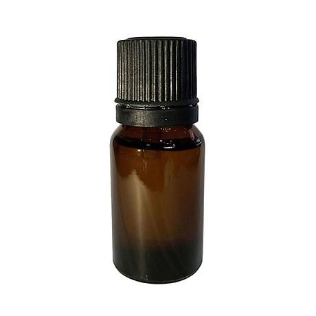 Dụng cụ bấm mi mắt Eyelash Curler - Tặng 1 lọ tinh dầu dừa 10ml 3