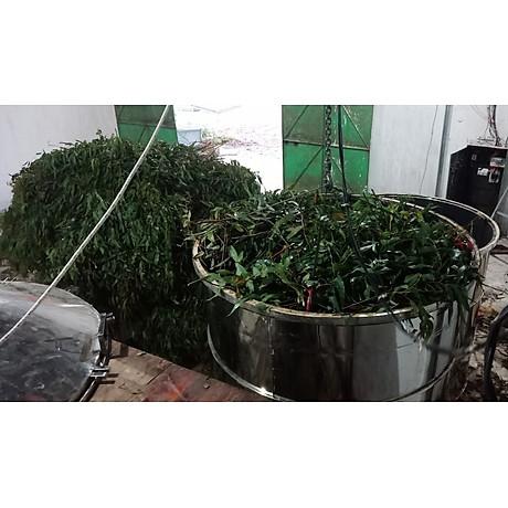 Tinh dầu Tràm Organic hữu cơ 100ml Mộc Mây - tinh dầu thiên nhiên nguyên chất 100% - dùng xông tắm ngừa cảm lạnh, trị côn trùng cắn đốt cho Bé, Trẻ sơ sinh và Trẻ nhỏ An toàn cho làn da nhạy cảm của Bé 16