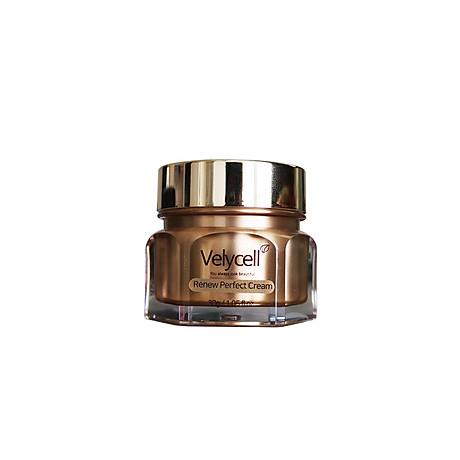 Kem dưỡng da Velycell Renew perfect cream 30ml 4