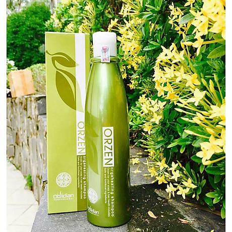 Dầu gội chống rụng tóc Obsidian Professional Orzen Orgahealing Shampoo Hàn Quốc 320ml tặng kèm móc khoá 7