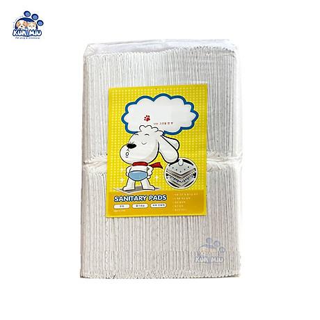 Tấm lót vệ sinh cho chó mèo than hoạt tính khử mùi 1