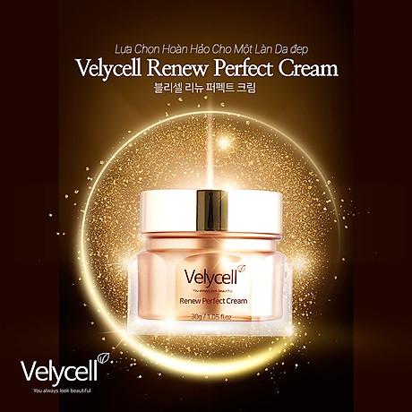 Kem dưỡng da Velycell Renew perfect cream 30ml 5