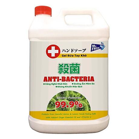 Gel rửa tay khô diệt khuẩn Mrfresh 5L 1
