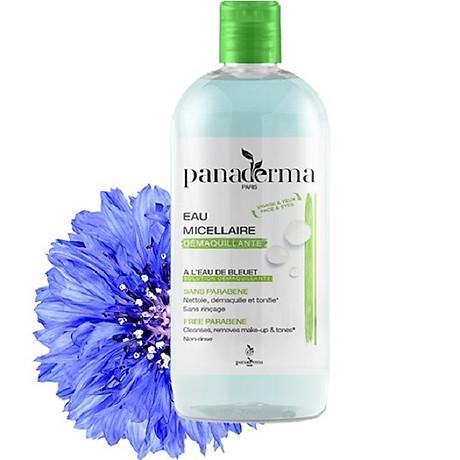 Nước tẩy trang Panaderma 500ml hương việt quất nắp xanh 1