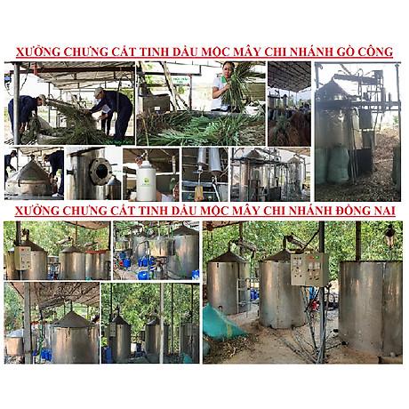 Tinh dầu Gỗ Đàn Hương 100ml Mộc Mây - tinh dầu thiên nhiên nguyên chất 100% - chất lượng và mùi hương vượt trội - Có kiểm định 8