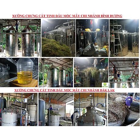 Tinh dầu Hương Nhu 100ml Mộc Mây - tinh dầu thiên nhiên nguyên chất 100% - chất lượng và mùi hương vượt trội - chuyên gia chăm sóc tóc hư tổn 7
