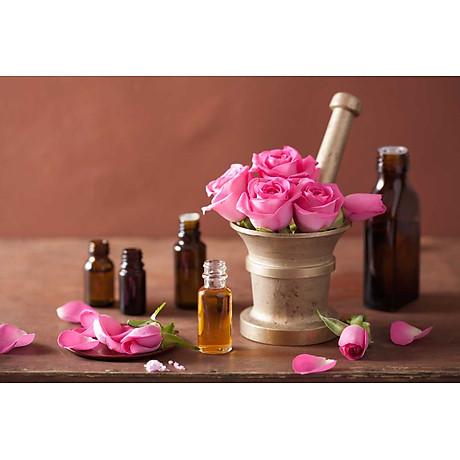 Tinh dầu hoa Hồng 100ml Mộc Mây - tinh dầu thiên nhiên nguyên chất 100% - chất lượng và mùi hương vượt trội 13