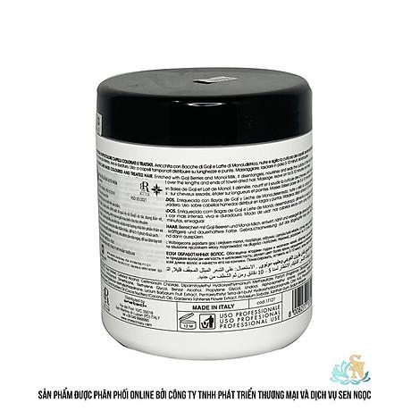 Hàng Ý Dầu hấp phục hồi, giữ màu cho tóc nhuộm 500 ml RR17126 3