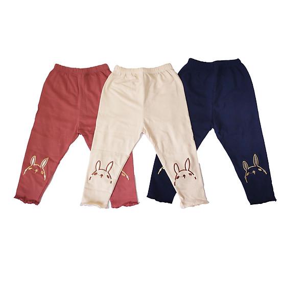 Combo 3 chiếc quần legging thêu hình dễ thương cho bé gái 7-20kg
