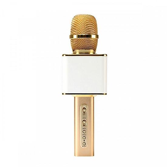 Mic Karaoke kiêm loa Bluetooth SD-08 - Có khe cắm thẻ nhớ và USB (Màu ngẫu nhiên)