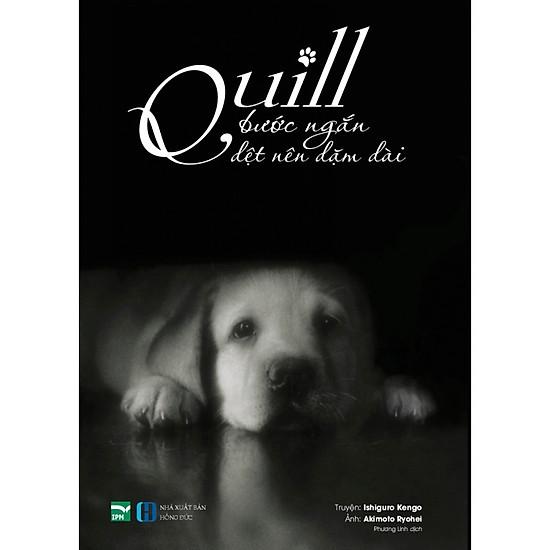 Quill – Bước Ngắn Dệt Nên Dặm Dài