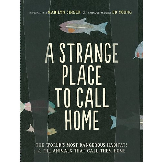 Hình đại diện sản phẩm A Strange Place to Call Home: The Worlds Most Dangerous Habitats & the Animals That Call Them Home